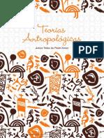Juarez Tadeu de Paula Xavier  - Teorias Antropológicas.pdf