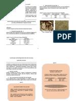 Study of Soil-italian