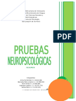 RESUMEN - PRUEBAS NEUROPSICOLÓGICAS