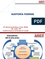 Michael Herbe Cortes Auditoria Forense