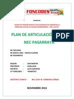 PLAN ARTICULACION NEC PASARRAYA.pdf