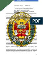 INFORME COHECHO PASIVO PROPIO  PNP