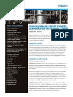 PipingDesignOnline.pdf