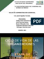 CICLO DE VIDA DE LAS ORGANIZACIONES