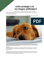 Conoce Cómo Proteger a Tu Perro de Los Fuegos Artificiales
