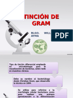 Tincion de Gram (1)