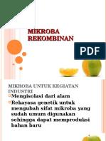 Perakitan Mikroba