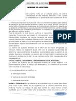 Resumen Normas de Auditoria- Cb