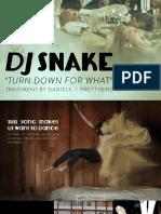 DJ_Snake_Lil_Jon_DANIELS_Music_Video_Treatment.pdf