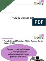 2. Femele Genital