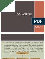 Colageno Perio