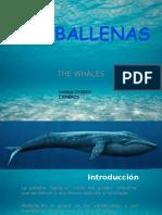 La Ballenas. Hanna Crijnen