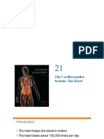 017 1 intro heart anat