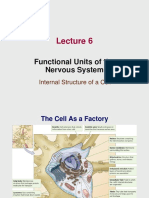 Lecture 6 - Functional Units of the NS 2