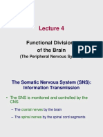 Lecture 4 - Functional Divisions of the Brain_3