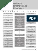 Transferencia de Protones
