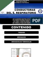 Vías Conductoras. Evaluación III