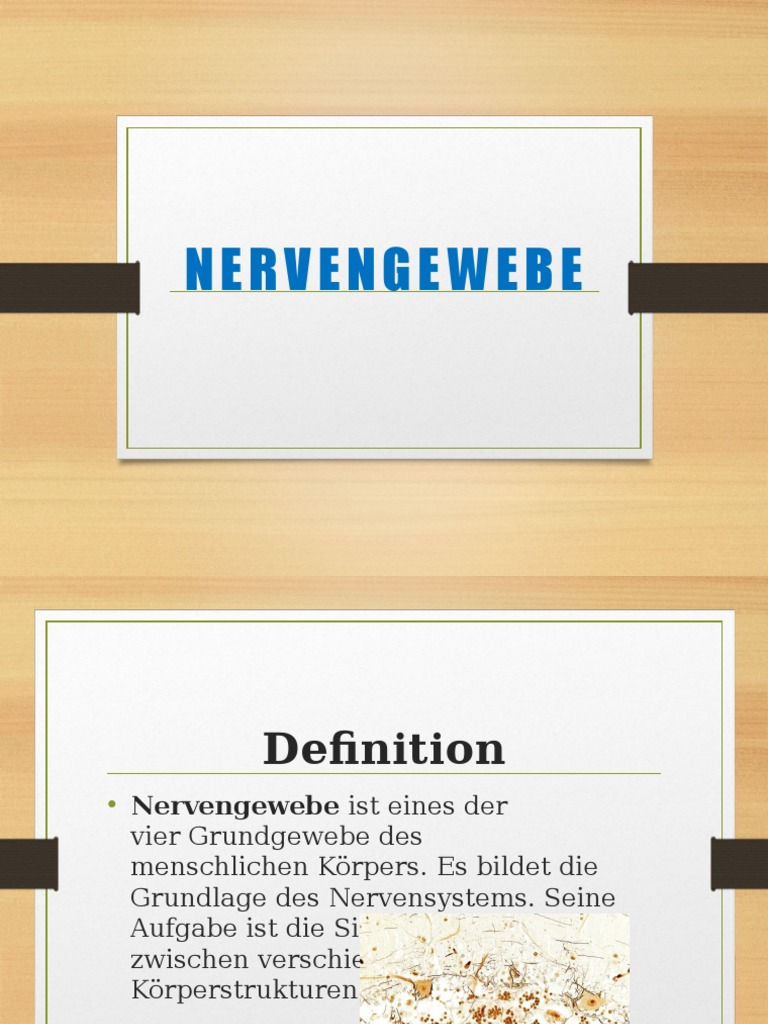 Nervengewebe