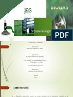 proyecto de biogas jhm.pdf