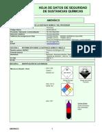 HDS Amoniaco ACHS - 2010.pdf