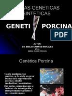 Lineas Geneticas Sinteticas