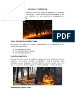 Incendios Forestales Final