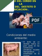 Manejo Del Cerdo en El Destete-A.