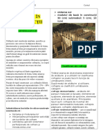Cursul Practica Material Distribuitiv1