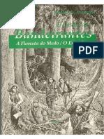 O Desafio Dos Bandeirantes - A Floresta Do Medo - O Engenho (OCR)