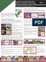 acciones para la Conservación de la Biodiversidad en el Estado de Querétaro.pdf