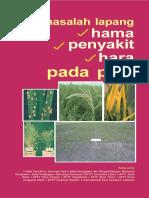 Buku Hara, Hama, Penyakit Padi 9