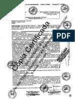 06.- Copia Partida Registral de La Empresa