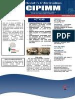 Boletin Informativo Cipimm No.6