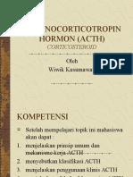 Cor Tico Steroid