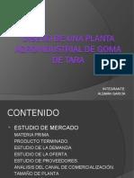 DISEÑO DE UNA PLANTA AGROINDUSTRIAL DE GOMA DE TARA.ppt