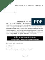 Novo CPC Protesto Judicial Terceiros Intimacao Edital Furto Documentos Preservacao Direitos Gratuitas