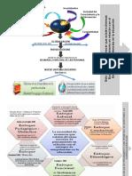 Tarea Organizador Grafico Competencias