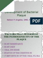 Mod 5 Development of Bacterial Plaque