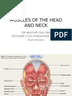 Praktikum Anatomi 3 (Muscle of Head and Neck