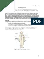 pathogenesis_Racaniello
