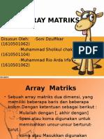 Array Matriksss