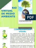 Seminario Virtual de Medio Ambiente Lección 2 (1)