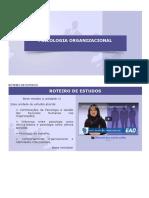 Porganizacional - u1 (Com Imagens)