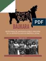 Baukara-salge