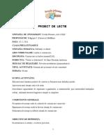 Proiect practică pedagogică