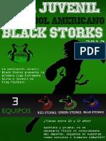 I Edicion Liga Juvenil Black Storks - Normativa
