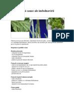 Simptome Si Cauze Ale Imbolnavirii Plantelor