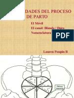 94605310-planos-de-hodge.ppt