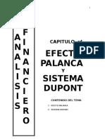(5) Efecto Palanca y Sistema Dupont