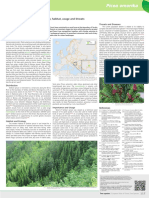 Picea_omorika.pdf